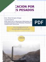 Intoxicacion Por Metales Pesados Dra. Burgos