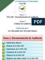 Nia 230 y Cedulas de Auditoria