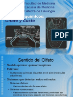 SENTIDOS QUIMICOS