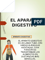 Aparato digestivo
