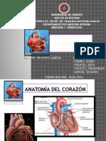 Anamnesis Cardiovascular 2016