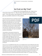Why is There No Fruit on My Tree_ — Home Lawn and Garden
