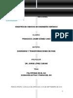 Tarea 1. Polimorfismo.docx