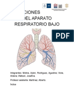 INFECCIONES DEL APARATO RESPIRATORIO BAJO.docx