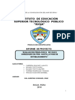 INFORME de Proyecto Piña 2016 Julio
