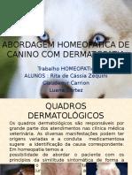 Abordagem Homeopática de Canino Com Dermatopatia