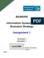 BAM6005 Assignment 1