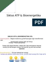 Siklus ATP & Bioenergetika 2015 PAK ALI R.