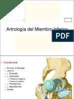 06 Artrología MMII (1)