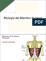 08 Miología MMSS (1)