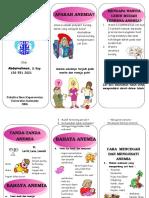 46530513-Leaflet-Anemia.doc