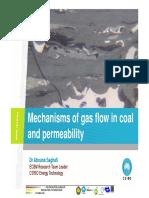 03.Mechanisms of Gas Flow in Coal