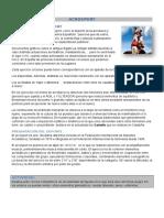 Apuntes Acrosport_ Modelo a2