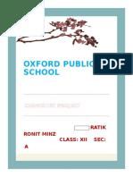 Oxford Public School