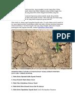 10 Risiko Beli Tanah Lot Bangunan Tiada Geran Individu - Lot Lidi Geran Kongsi