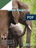 tmp_9623-Elephants Never Forget1539571714.pdf