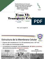 Tema Vi Transporte Celular Villa