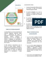 Autoevaluacion Sena 2013