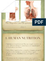 BG3-3-The Digestive and Respiratory Systems