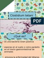 Clostidium tetani
