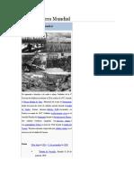 Primera Guerra Mundial Resumen