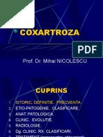 Curs coxartroza - Dr. Nicolescu