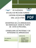Biosíntesis de Los Aminoácidos No Esenciales Desde El Punto de Vista Nutricional Catabolismo de Proteínas y de Nitrógeno de Aminoácidos (1)