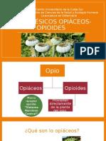 Analgésicos opiáceos.pptx