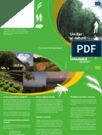 Leaflet Nature Ro
