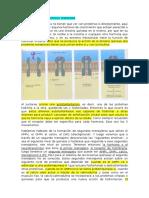 09NA Clase. Comunicacion Celular II y Hormonas. Pedro Cruz