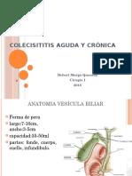 Colecistitis Aguda y Crónica. Exponer