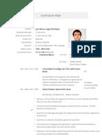 Currículum Vitae Formato Oficientes