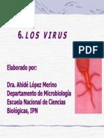 6. VIRUS