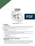 citologia-1