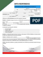 Formato de Carta Responsiva Para Compraventa de Vehículo