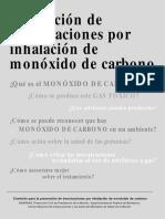 Monoxido de Carbono