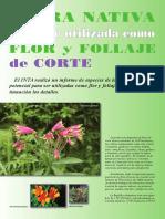 2010flora nativa para ser utilizada como flor y follaje de corte.pdf