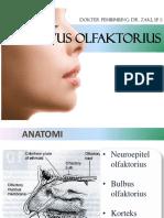 Referat Nervus Olfaktorius