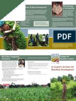 PBS Brochure
