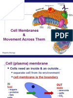 3. CellMembranes