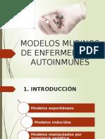 Modelos Murinos de Autoinmunidad