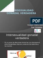 intersexualidad gonadal verdadera 1