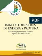 Boletín Forrajero de Energía