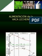 Alimentación de La Vaca Lechera PDF