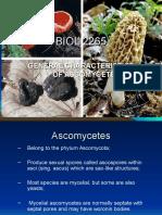 BIOL 2265-The Ascomycetes