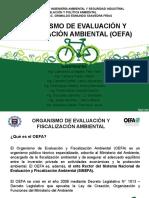 OEFA - Trabajo Final