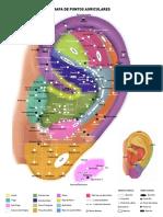 Mapa Auricular