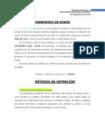 176104117-Hidroxido-de-Sodio.pdf