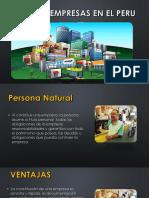 Tipos de Empresas en El Peru PDF