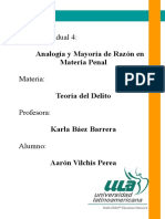 Vilchis Perea S4 TI Analogíapenal